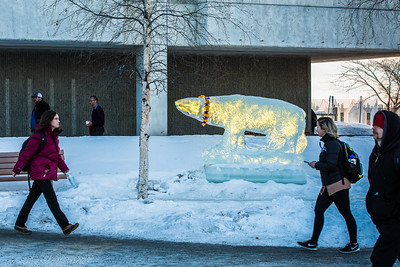 A polar bear carved out of ice decorates campus.  Filename: CAM-16-4794-7.jpg