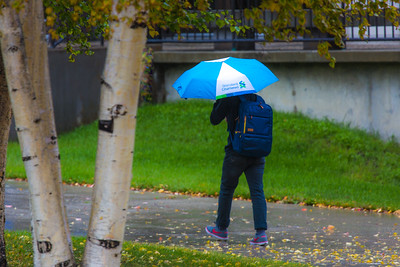 A number of consecutive rainy days brought out a variety of umbrellas on the Fairbanks campus in August 2015.  Filename: CAM-15-4627-22.jpg