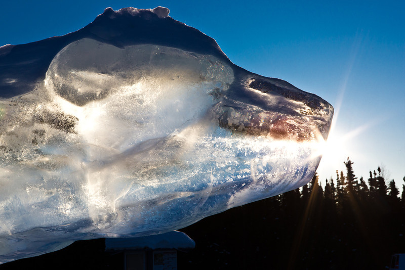"The Nanook ice sculpture greets visitors to campus from its home near the kiosk along Thompson Drive.  <div class=""ss-paypal-button"">Filename: CAM-12-3327-22.jpg</div><div class=""ss-paypal-button-end"" style=""""></div>"
