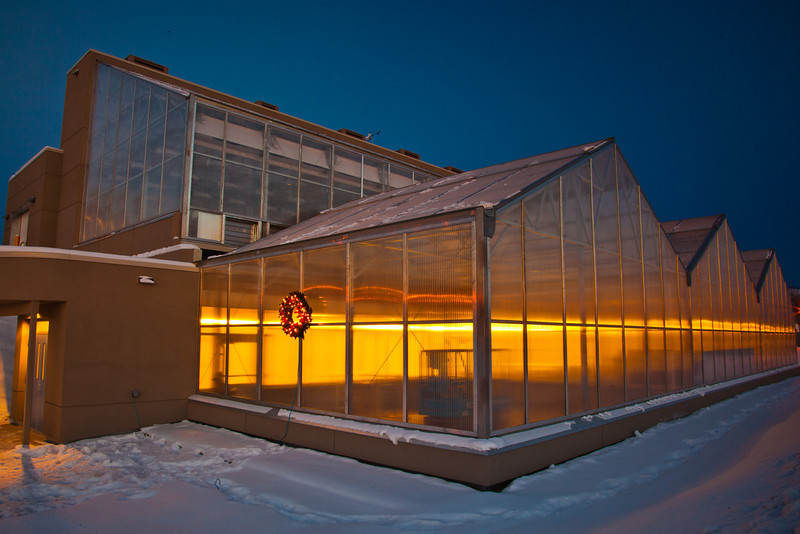 """A holiday wreath adorns the new School of Natural Resources and Agriculural Sciences greenhouse on UAF's West Ridge.  <div class=""""ss-paypal-button"""">Filename: CAM-11-3236-15.jpg</div><div class=""""ss-paypal-button-end"""" style=""""""""></div>"""