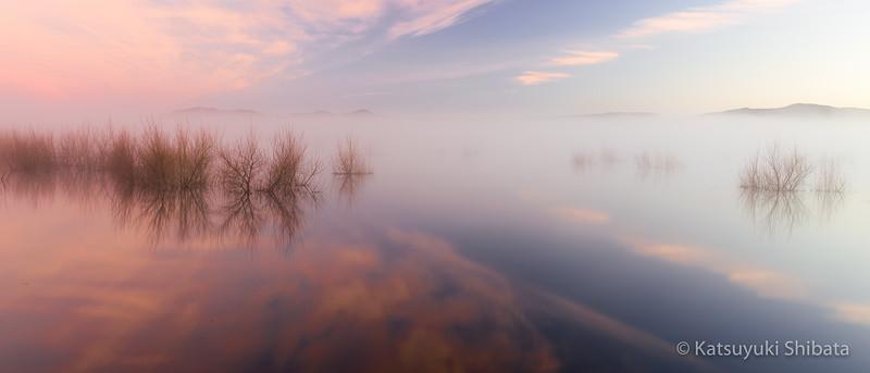 PGC-1: Daybreak