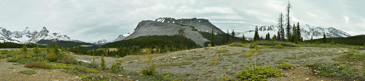 Mt. Athabasca, Sunwapta Pass, White Goat Wilderness Area, Banff NP, Canada