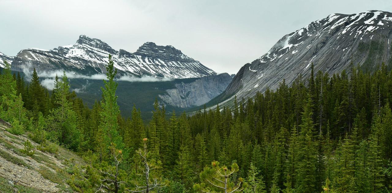 Weeping Wall from Sunwapta Pass, Banff NP, Canada