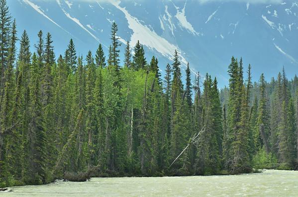 Athabasca River, Alberta, Canada;
