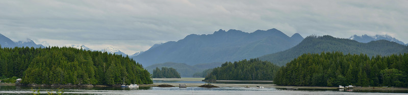 Tofino looking inland, Vancouver Island