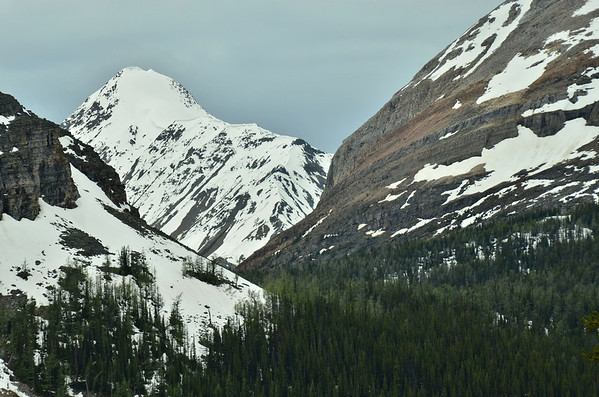 Schäffer Ridge, Lake O'Hara, Yoho NP, British Columbia, Canada
