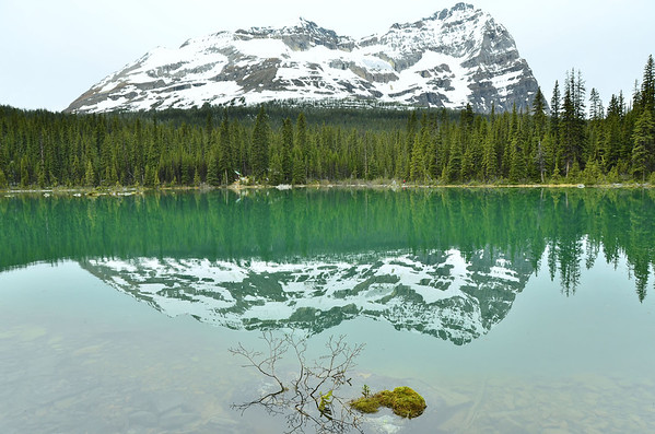 Lake O'Hara, Yoho NP, British Columbia, Canada