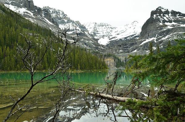 Lake O'Hara, Yoho NP, British Columbia, Canada