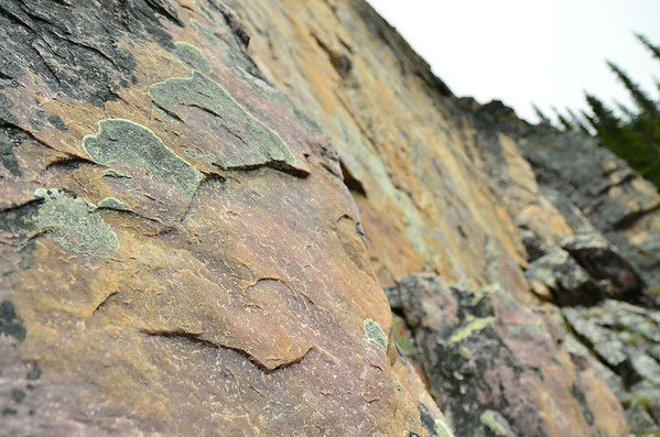 Rock surface and lichen, Lake O'Hara, Yoho NP, British Columbia, Canada