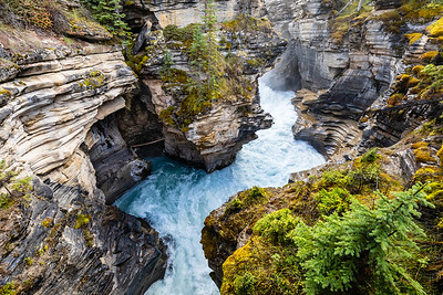 Athabasca Canyon