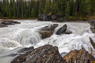 Rapids on the Kicking Horse River