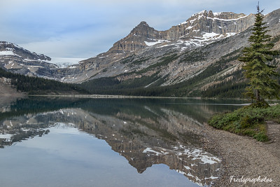 Bow Lake Area-17