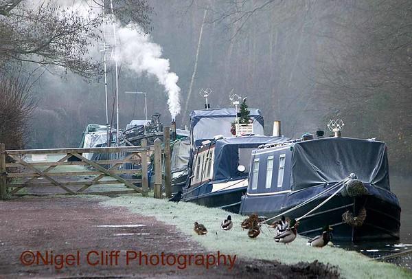 Kinver Canal  December 2014