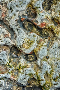 Close-up views of tide pool rocks with unique colors and patterns