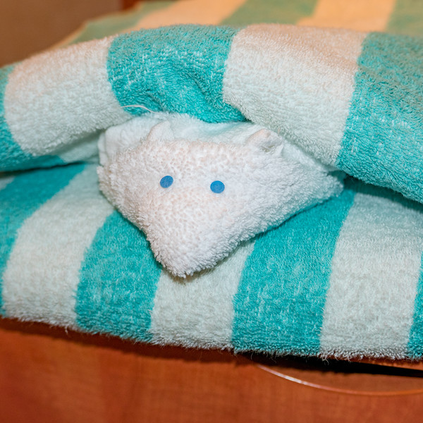Mouse towel hiding between 2 pool towels