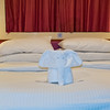 Stateroom with towel folded into an Elephant