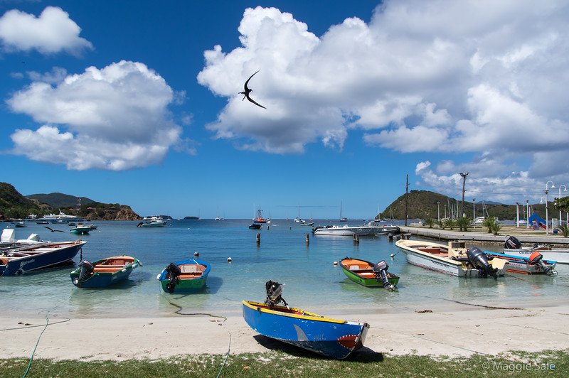 The very attractive group of islands known as Les Saintes, part of Guadaloupe. Note the swooping frigate bird which dives into the water for fish.