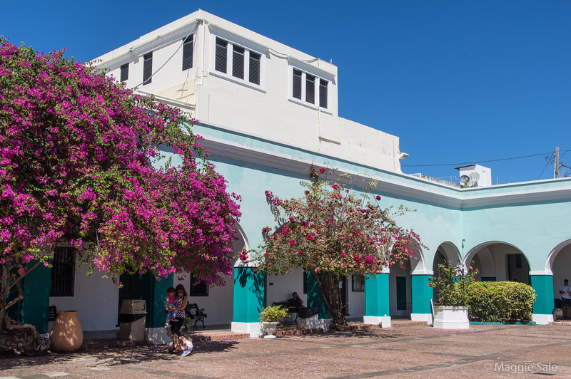 The courtyard of the University of the Caribbean