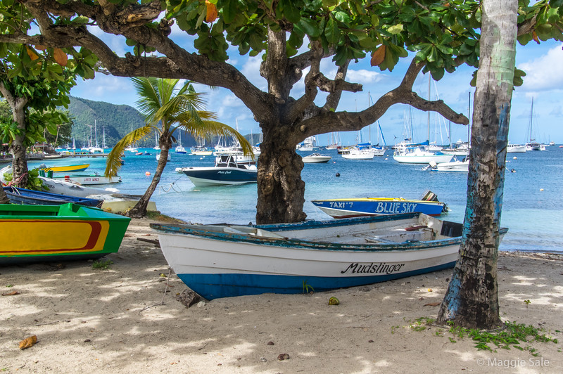 Our first stop was Bequia, one of the islands in the Grenadines, a chain of islands belonging to St. Vincent, which was close by. A very English island! Julian's favourite!