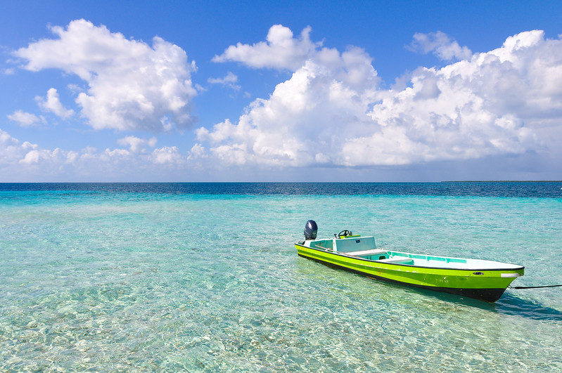 Look at This Beautiful Blue Water!