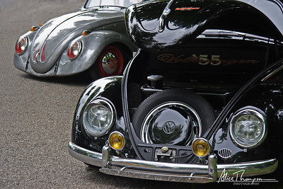 '55 Volkswagen Beetles