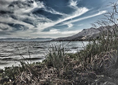 Lake Chapala Black and White