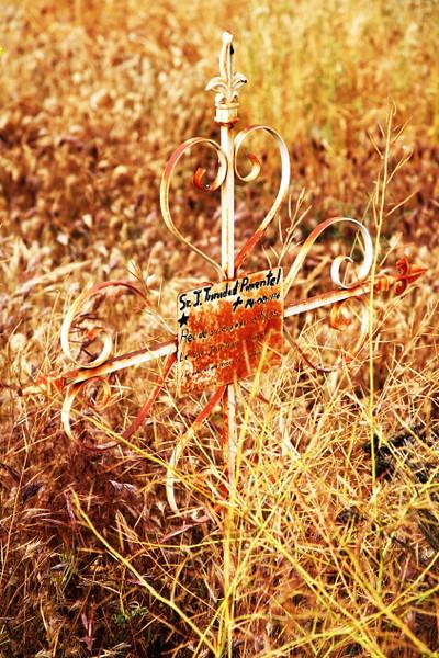 cemetery 15