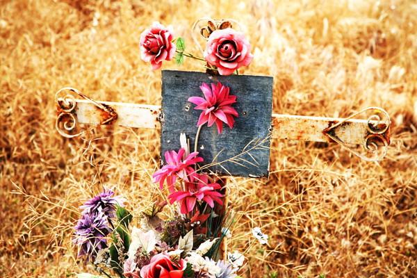 cemetery 8