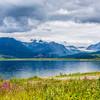 Alaska Range Glaciers