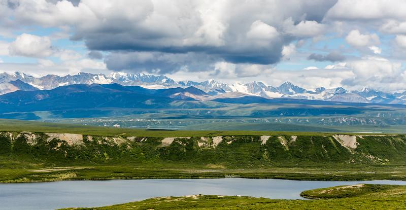 Summer Snow on the Alaska Range