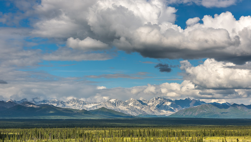 Alaska Range & Spruce Covered Tundra