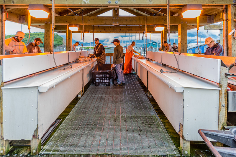 Cleaning Fish in Valdez