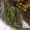 Buttermilk Falls in Ithaca Falls - October 21, 2009