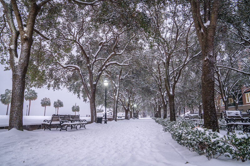 Waterfront Park Dressed up in Snow