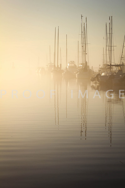 Foggy Morning City Marina