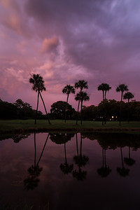 Kiawah Reflections