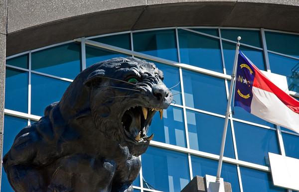 Charlotte Carolina Panthers