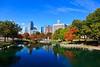Charlotte Skyline at Marshall Park