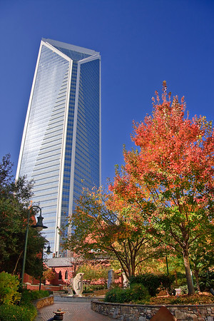 Duke Energy Tower from The Green