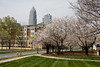 Charlotte in the Spring