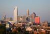 Charlotte in the Late Afternoon