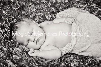 Elanor Lanik Newborn