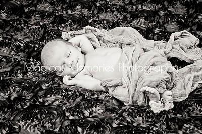 Ibri Mitchell Newborn