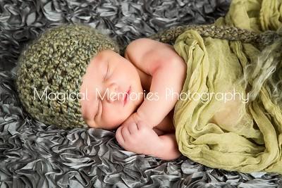 Logan Banahan Newborn