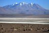From the boulders and xeric shrubs - across the Salar Ascotan - beyond the slopes of Cerro Pabellon - to Volcan Aucanquilcha - Alto Loa National Park.
