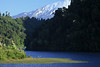 Across the glacial formed Laguna Patas, and spike sedges - beyond the forested lower western slope of Cerro Tellez (r) - to the lower igneous rock and glacial ice slope, of Volcan Osorno.