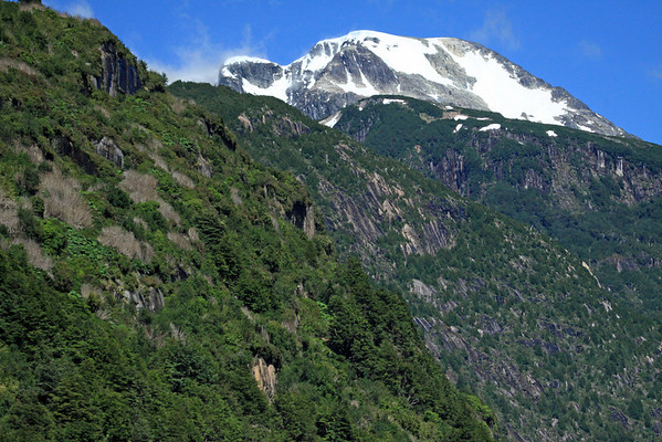 Along the rocky and vegetated slope of the Patagonia vegetation - nalga, notro, and chilco (shrubs), along with the southern beech trees (Nothofagus - predominately the coihue, lenga, and nirre) - with the glacial slope of the Patagonia Andes, the Southern Volcanic Zone.