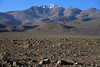 Beyond the boulders and scrub vegetation - up to Cerro Polapi - rising to about 19,521 ft. (5,950 m).