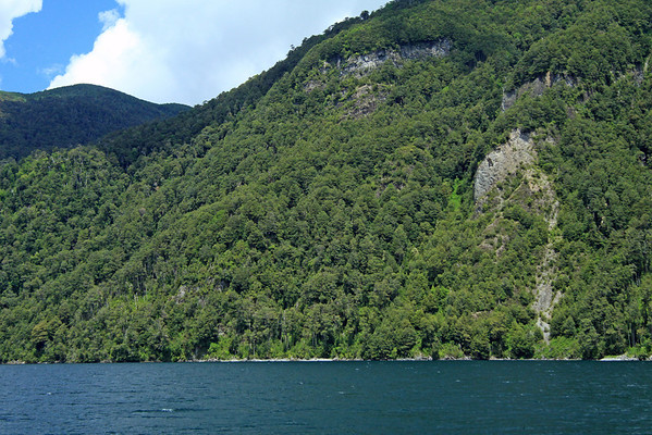 Across the white-caps upon Lago Pirehueico - to the sunlit and cloud-shadowed igneous rock slopes, clustered with southern beech trees.