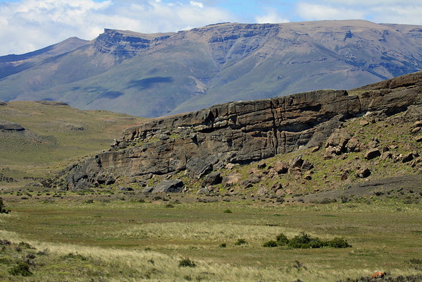 From a grazing guanaco, among the tussock grass, shrubs, and cushions plants - to the sedimentary rock outcrop and scree - and distal slope along Sierra Toro.